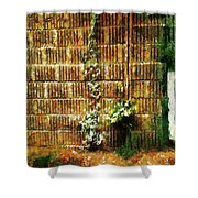 Calico Wall Shower Curtain