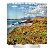 California Coast Wildflowers On Cliffs Shower Curtain