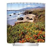 California Coast Wildflowers Vertical Format Shower Curtain