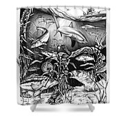 California Collage Shower Curtain