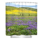 California Country Shower Curtain