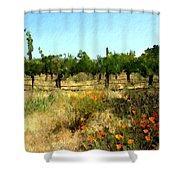 California Cuvee Shower Curtain