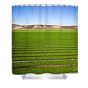 California Farm 14pdxl069 Shower Curtain