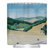 California Highway Shower Curtain