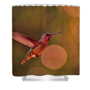 California Hummingbird Shower Curtain