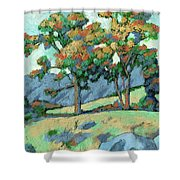 California Landscape Shower Curtain