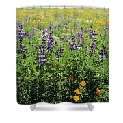 California Meadow Shower Curtain