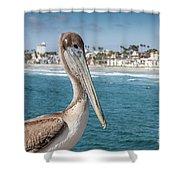 California Pelican Shower Curtain by John Wadleigh