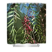 California Pepper Tree Leaves Berries Abstract Shower Curtain