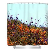 California Poppies And Wildflowers Shower Curtain