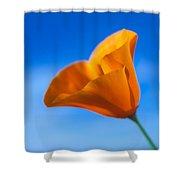 California Poppy Shower Curtain