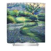 California Spring Shower Curtain
