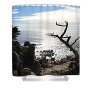 California Sun Shower Curtain