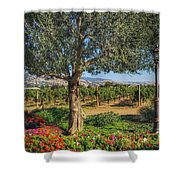 California Wine Country Shower Curtain