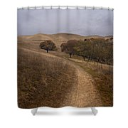 California Winter Shower Curtain