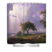 California_spring Shower Curtain