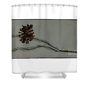 Caligarphy Pine Cone Shower Curtain