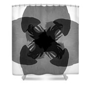 Call Of The Raptors Shower Curtain