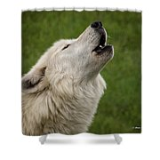 Call Of The Wild H Shower Curtain