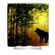 Call Of The Wolf Shower Curtain