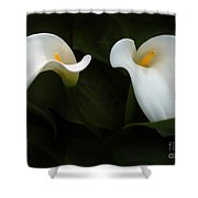 Calla Duo Shower Curtain