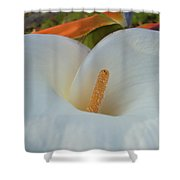 Calla In Paradise Shower Curtain