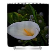 Calla In The Garden II Shower Curtain