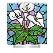 Calla Lilies 3 Shower Curtain