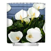 Calla Lilies- Oregon Shower Curtain