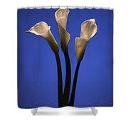 Calla Lilies Shower Curtain