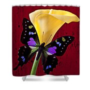Calla Lily And Purple Black Butterfly Shower Curtain by Garry Gay