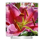 Calla Lily Art Prints Pink Lilies Flowers Baslee Troutman Shower Curtain