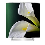 Calla Lily Green Black Shower Curtain