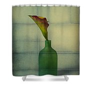 Calla Lily In Green Vase Shower Curtain