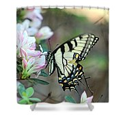 Callaway Butterfly Shower Curtain