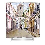 Calle Fuente Alhabia Shower Curtain