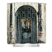 Calle Tapachula - 2 Doors Open Shower Curtain