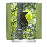 Calling For Mom Shower Curtain