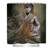 Calm Abiding And Insight Shower Curtain