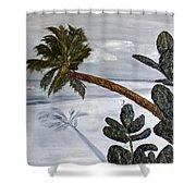 Calm Beach Palm Shower Curtain