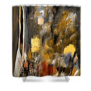 Calm Out Of Chaos 2010 Shower Curtain