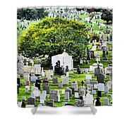 Calvary Cemetery From Above Shower Curtain