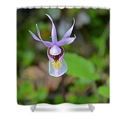 Calypso Orchid Shower Curtain