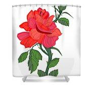 Calypso Rose Shower Curtain