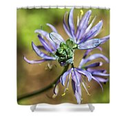 Camas Bud To Bloom Shower Curtain