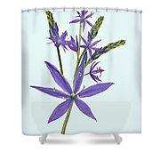 Camas, The Flowers Shower Curtain