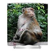 Cambodia Monkeys 2 Shower Curtain