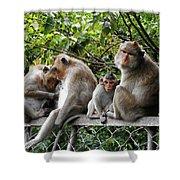 Cambodia Monkeys 5 Shower Curtain