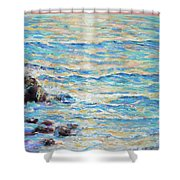 Cambria Rocks Shower Curtain