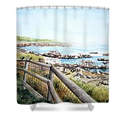 Cambrian Shores Shower Curtain